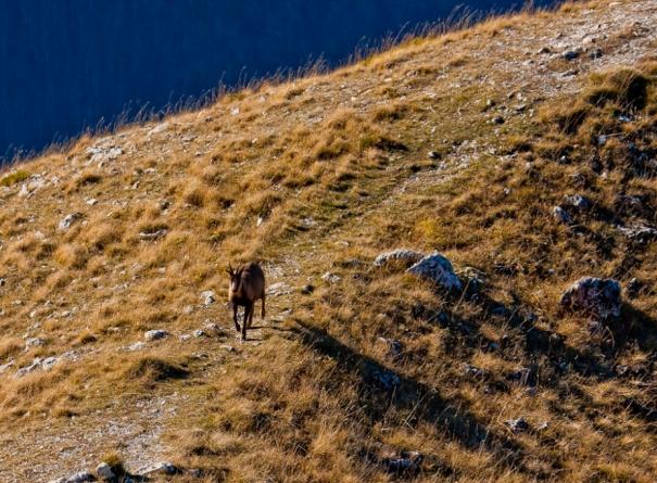 Abruzzo-09