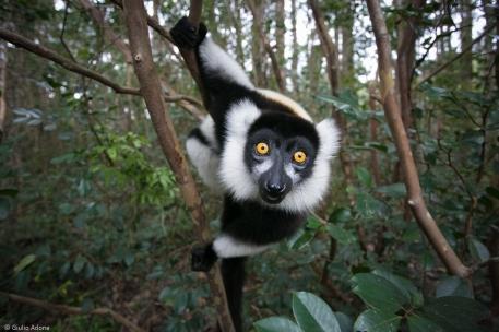 Madagascar-18