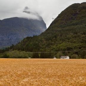 Norvegia-008