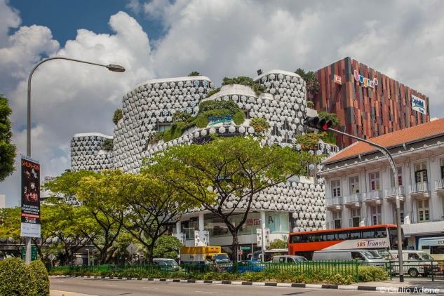 malesia_singapore-web-110